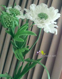 Scabiosa | Clay Flower Art