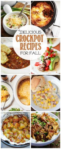 These delicious crockpot recipes are quick and simple to prepare - the perfect fall comfort foods!