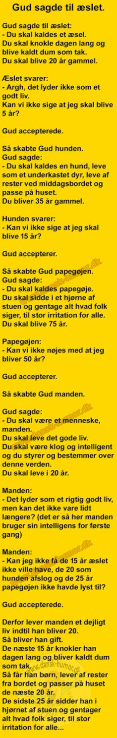 Gud sagde til æslet. Wise Qoutes, Funny Qoutes, Funny Texts, Joke Stories, One Liner, Mind Blown, Alter, Good To Know, The Funny