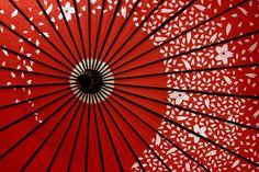 Kasa (Japanese umbrella) : photo by Farl