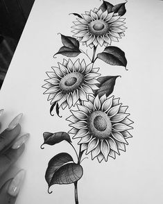 Image may contain: flower and plant Sunflower Tattoo Sleeve, Sunflower Tattoo Shoulder, Sunflower Tattoos, Sunflower Tattoo Design, Sunflower Drawing, Floral Thigh Tattoos, Black Tattoos, Tattoo Sketches, Tattoo Drawings