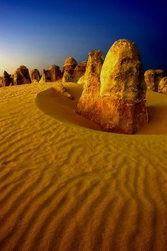 Desert Sentinels, The Pinnacles, Western Australia #City_Edge_Apartment_Hotels #Cityedge http://www.cityedge.com.au