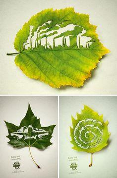 Hojas, contaminación y medio ambiente
