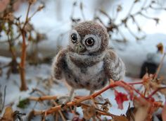 Felt owl by SkojSkojDesignStudio