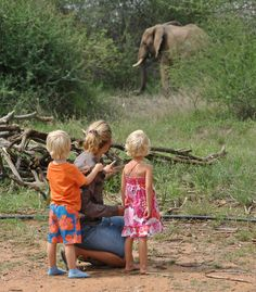 Kids and Safaris