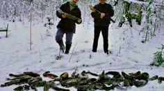 Это уже не рыбалка а браконьерство Браконьеры Ловля рыбы на пустой крючё...
