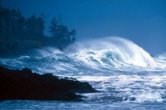 Storm watching - Tofino, West Coast of Vancouver Island, B. Vancouver Island, Canada Vancouver, Best Places To Travel, Great Places, Places To See, Beautiful Places, Sunshine Coast, Pacific Coast, West Coast