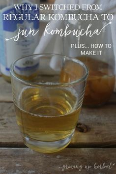 """Have you heard of """"jun kombucha?"""" Today I'm tell you a bit about why it's so good for you, and why I made the switch from regular kombucha to this variety! Jun Kombucha, Kombucha Recipe, Kombucha Flavors, Green Tea Kombucha, Kombucha Drink, Kombucha Brewing, Homebrewing, Kimchi, Kombucha Beneficios"""