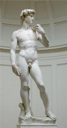 David Michelangelo David is a masterpiece of Renaissance sculpture created between 1501 and by the Italian artist Michelangelo. It is a marble statue of a standing male nude. Miguel Angel, Rome Florence, Carpeaux, High Renaissance, Oeuvre D'art, Artist Art, Love Art, Les Oeuvres, Amazing Art