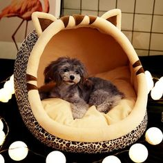 Us 2102 35 Off Warm Puppy House For Small Dog Cat Sleeping Kennel Soft Home Pet Cats Bed Nest Washable Dogs Mat Pets Foldable House Bed Product In Dog Lover Gifts, Dog Lovers, Cat Tent, Hedgehog Pet, Puppy House, Dog Wash, Dog Silhouette, Dog Store, Cat Sleeping