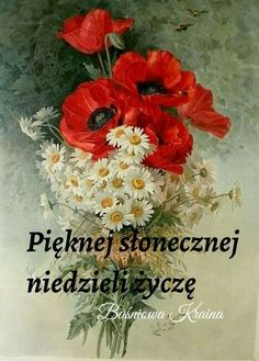 Humor, Flowers, Cards, Painting, Good Afternoon, Good Morning, Night, Pictures, Polish