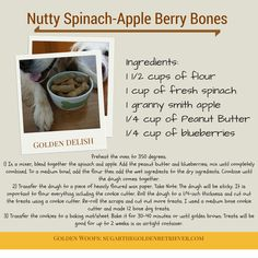Nutty Spinach-Apple Berry Bones Dog Treats