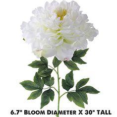 Pin by chelsea chan on artificial plants pinterest silk flowers mightylinksfo