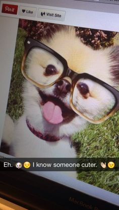 """Cute puppy pic? Meh. Cute puppy plus flirty snap? Game-changer! Put your next """"OMG ADORDS ANIMAL"""" snap to work with this caption."""