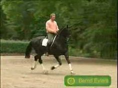 Horses-Please Don't Stop the Music - YouTube