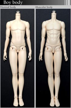 FairyLand Ball Joint Doll Male Body Their heads leave much to be desired, but the bodies are amazing!