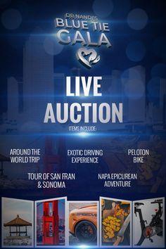 Blue Tie Gala Live & Silent Auction Items. | Colon Cancer | Colon Cancer Research | Colon Cancer Prevention | Colon Cancer Information | Colon Cancer Charity Work | Colon Cancer Support | Colon Cancer Fundraiser |