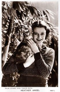 Old Hollywood Glamour, In Hollywood, Heather Angel, Betty White, British American, Cat People, Almost Famous, British Actresses, Life Photo