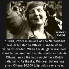 Princess Juliana - 10 Unbelievable History Facts You Really Need to See World History Lessons, History Books, World History Facts, History Timeline, History Memes, Black History Facts, Strange History, British History, Women In History