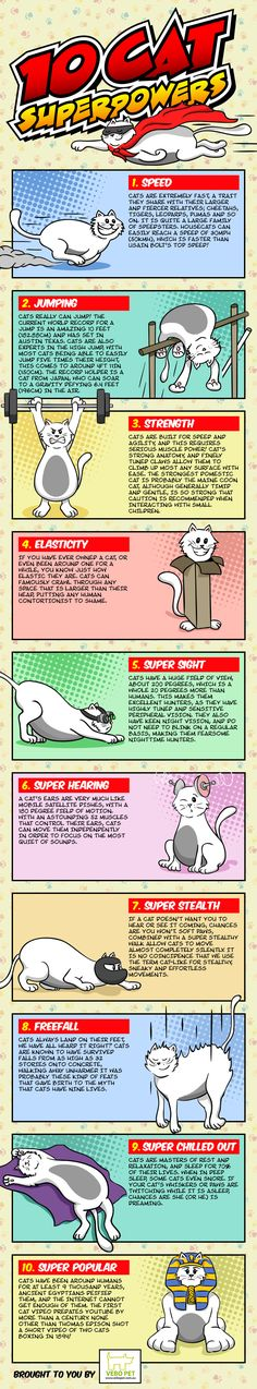 10 Cat Super Powers #Infographic #Cats #Pets