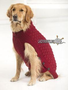 """Вязание свитера """"Клиффорд"""" для собак"""