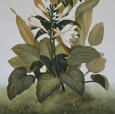 Mural of botanical decorative panel, detail of white lillies & foilage Hand Painted Walls, Building Facade, Decorative Panels, Ceiling Decor, Luxury Decor, Art Decor, Decoration, Hand Painting Art, Architecture Details