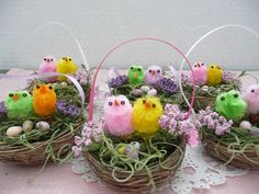 Set of TWO Nests Each with TWO Chicks and Eggs Spring and