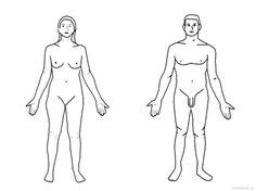 Lidské tělo obrázky | i-creative.cz - Kreativní online magazín a omalovánky k vytisknutí