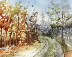 It is Sunday and I'm here to share a new watercolor.                 I use Winsor Newtons Artists' (- Professional as they now are called )w...