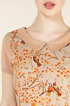 ❧ warm October Orange birds and Peter Pan collar too cute!
