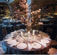 Japanese Cherry Blossom Centerpiece for winter weddings Cherry Blossom Centerpiece, Cherry Blossom Party, Pink Blossom, Branch Centerpieces, Wedding Centerpieces, Wedding Decorations, Flower Centrepieces, Wedding Notes, Diy Wedding