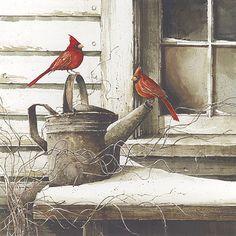 (by John Rossini) Winter Scenes, Beautiful Birds, Love Birds, Colorful Pictures, Bird Pictures, Cardinal Pictures, Animal Pictures, Cardinal Birds, Bird Drawings