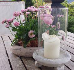 Heim Garten Schatzkiste Pillar Candles, Candle Holders, Table Decorations, Home Decor, Pink, Pastel, Asylum, Flowers, Lawn And Garden