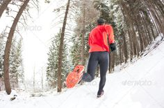 Winter trail running alone, athlete, back view, black, cap, caucasian, clothes, endurance, exercise, forest, healthy lifestyle, horizontal, jacket, jogging, lifestyles, male, man, mountain, nature, one, outdoors, path, pine, red, runner, running, shoes, snowy, sport, trail, wellbeing, white, winter, woods, Winter trail running