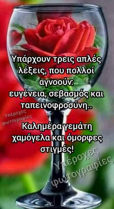 Beautiful Pink Roses, Greek Quotes, Good Morning, Diy And Crafts, Good Things, Ideas, Decor, Long Haircuts, Good Day