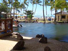 The hotel I will always go back: Kahala, Honolulu, Hawaii