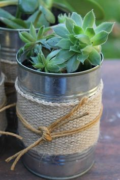 DIY Ideas With Old Tin Cans – Succulents In Recycled Tin Cans – Rustic Farmhouse… - Decoration Fireplace Garden art ideas Home accessories Types Of Succulents, Cacti And Succulents, Planting Succulents, Succulent Ideas, Succulent Planters, Succulent Decorations, Garden Decorations, Hanging Planters, Cactus Plants
