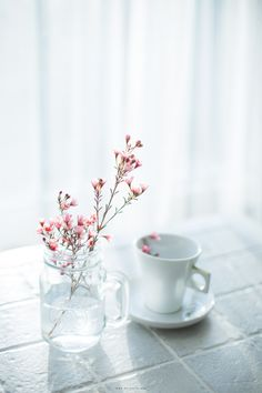 50 + beautiful flower photos will brighten your mood - Page 36 of 52 - LoveIn Home Flower, floral, flower wallpaper. Beautiful Flowers Photos, Beautiful Flowers Wallpapers, Pretty Wallpapers, Flower Photos, Flower Phone Wallpaper, Pastel Wallpaper, Iphone Wallpaper, Tiny Flowers, Pretty Flowers