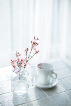 꽃과 함께 하는 여유