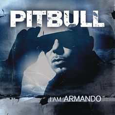 Echa Pa'lla (Manos Pa'rriba) - Pitbull