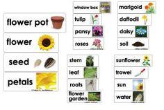 Flower Garden Crafts, Activities, Lessons, Games for Preschool and Kindergarten   KidsSoup