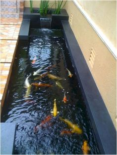 42 Awesome Fish Ponds Design Ideas For Your Backyard Landscape. There are many sorts of ponds it's possible to build in your backyard. A little pond limits the amount of fish and plants you̵. Fish Ponds Backyard, Backyard Water Feature, Garden Pool, Koi Ponds, Garden Water, Outdoor Fish Ponds, Modern Water Feature, Patio Pond, Garden Seat