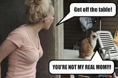 LOLcat...cats are definitely animals that back talk. That is when they are paying you any attention at all.
