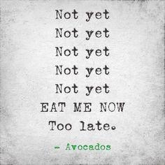 Dirtbag Avocados
