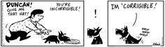 Raising Duncan Comic Strip, February 15, 2014 on GoComics.com