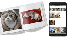 Google Lens can now identify your pet in photos to create photo books and make movies   Google Lens can now identify your pet in photos to create photo books and make movies  April 13 2018 by John Aldred Leave a Comment   It doesnt feel like almost a year ago since Google announced Google Lens. Its Googles machine learning system to assist your camera to help make your life easier. It helps it to identify what its looking at and then do or show you things based on what it sees. Now Google…