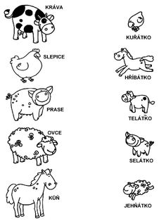 Pro Šíšu: Pracovní listy POZNÁNÍ Free Kindergarten Worksheets, Alphabet Worksheets, Montessori, Body Parts Preschool, Farm Activities, Elementary Science, Home Schooling, Stories For Kids, Projects For Kids