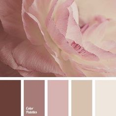 Soft and delicate colors. The pastel shades of pink, cream create a light and ai. Soft and delicate colors. The pastel shades of pink, cream create a light and airy look. Brown perfectly sets off the bright colors. A touching and sentime. Colour Pallette, Colour Schemes, Color Combinations, Pink Palette, Color Schemes For Websites, Pastel Color Palettes, Bedroom Color Palettes, Winter Colour Palette, Palette Wall