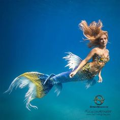 Hannah Mermaid Photo by Alicia Ward (Franco) - SeeThroughSea.com Tail by Hannah, silicone fins by FlipTails.