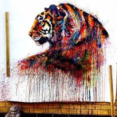 Tigerrrr! Follow us on Twitter!...and onPinterest!......and Facebook....yes.....that must be it....